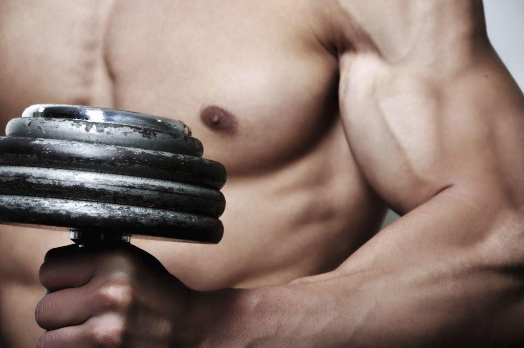 musculos y pesas