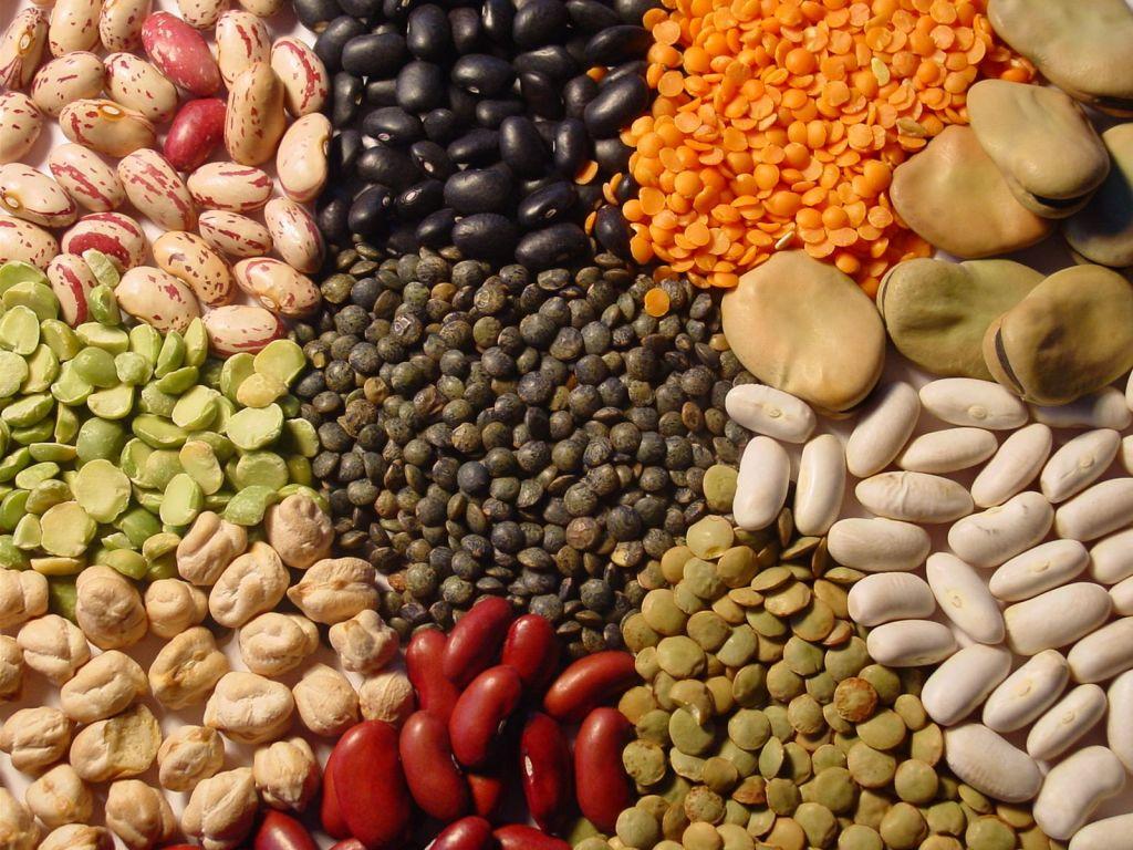 ¿Es efectiva la dieta del grupo sanguíneo?
