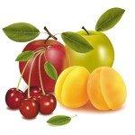 vector-fruta