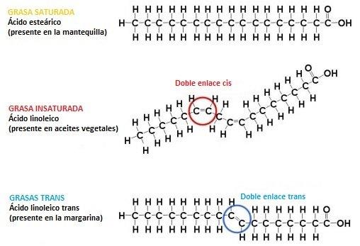 dobles-enlaces-grasas