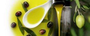 etapas aceite de oliva