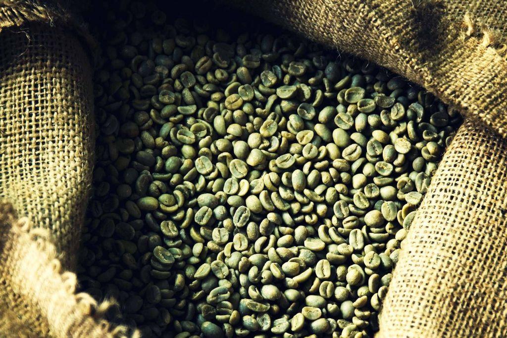 bolsa cafe verde