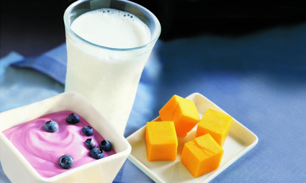 leche queso yogur