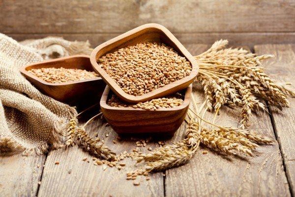 granos-cereales