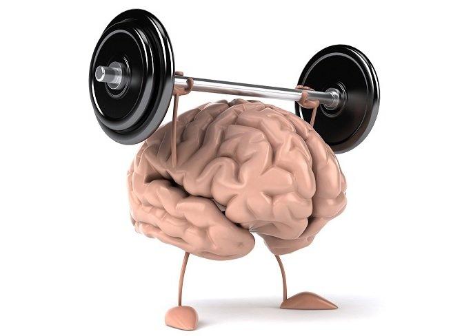 cerebro-haciendo-pesas
