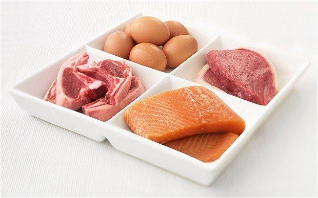 plato-alimentos-con-proteina