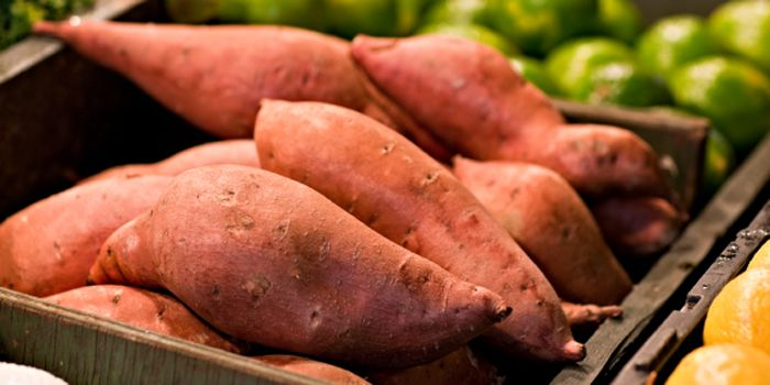 cesta-batatas