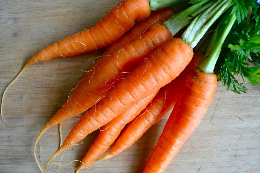 manojo-zanahorias
