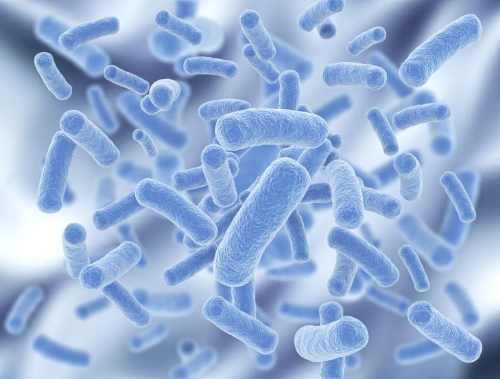 6 beneficios de los probióticos que han sido demostrados por la ciencia