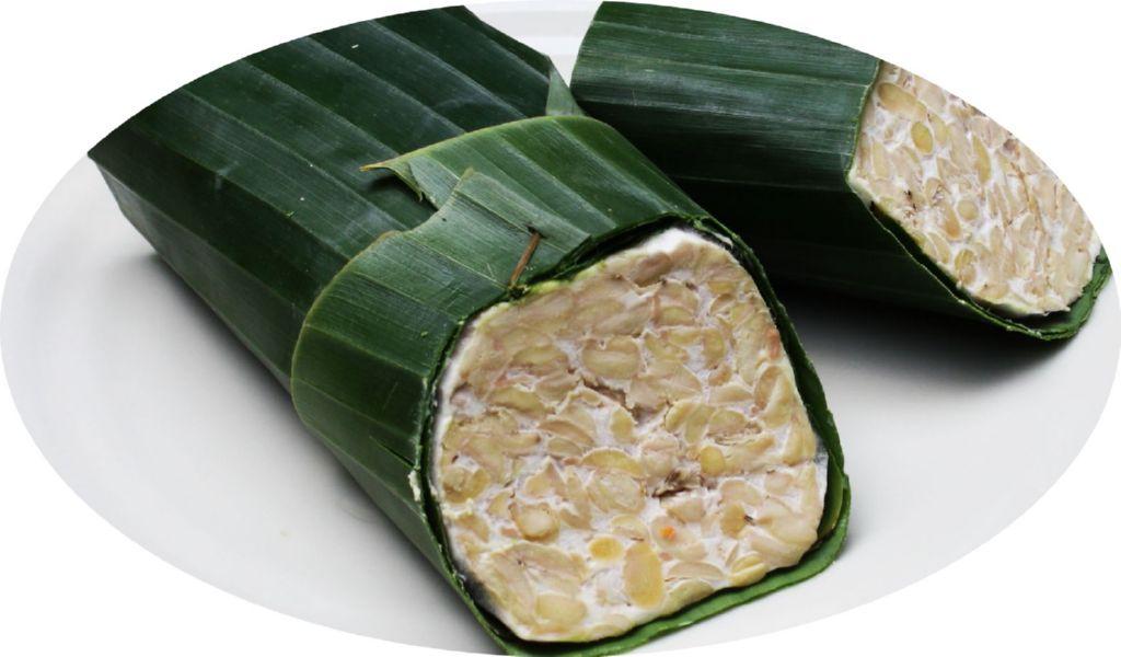 tempeh-fermentado