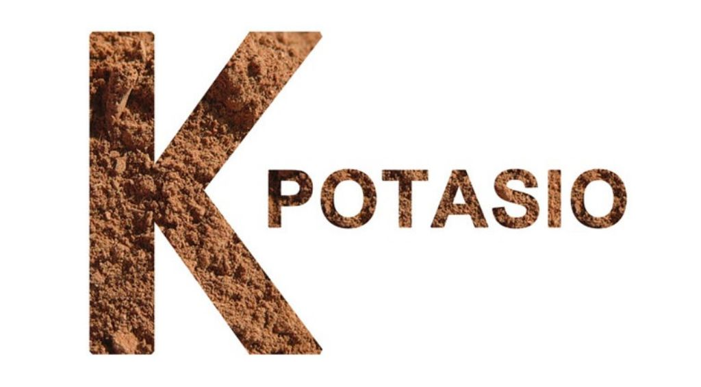 alimentos-potasio
