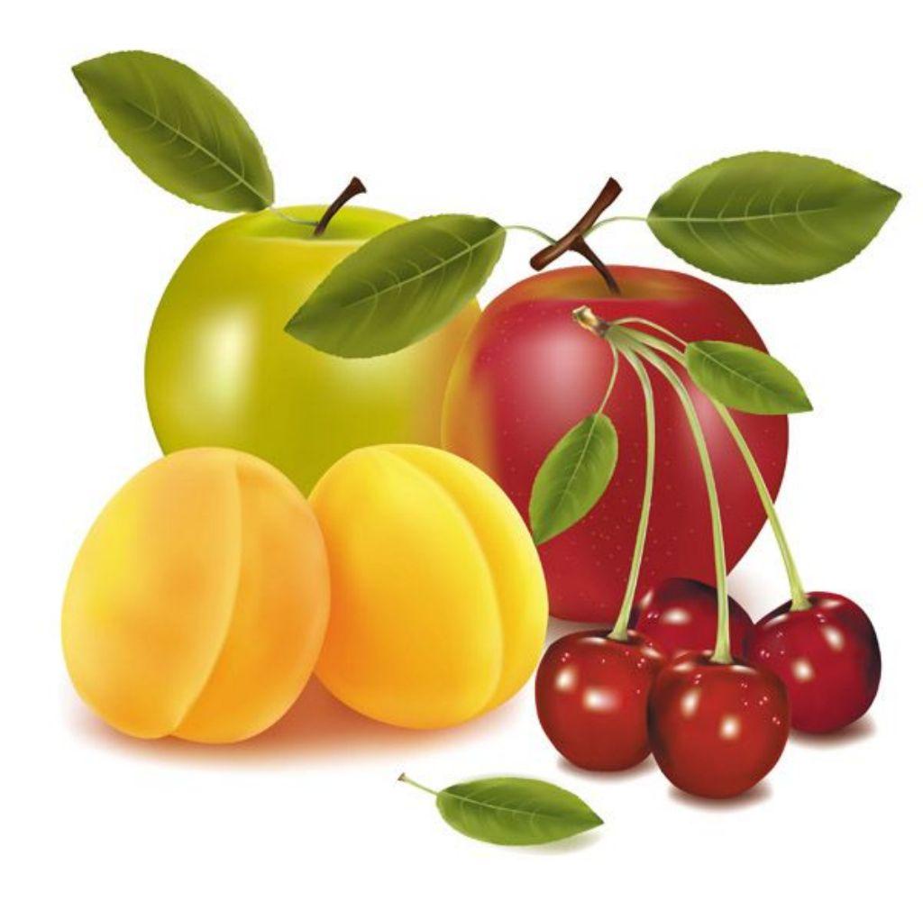 fruta-vector
