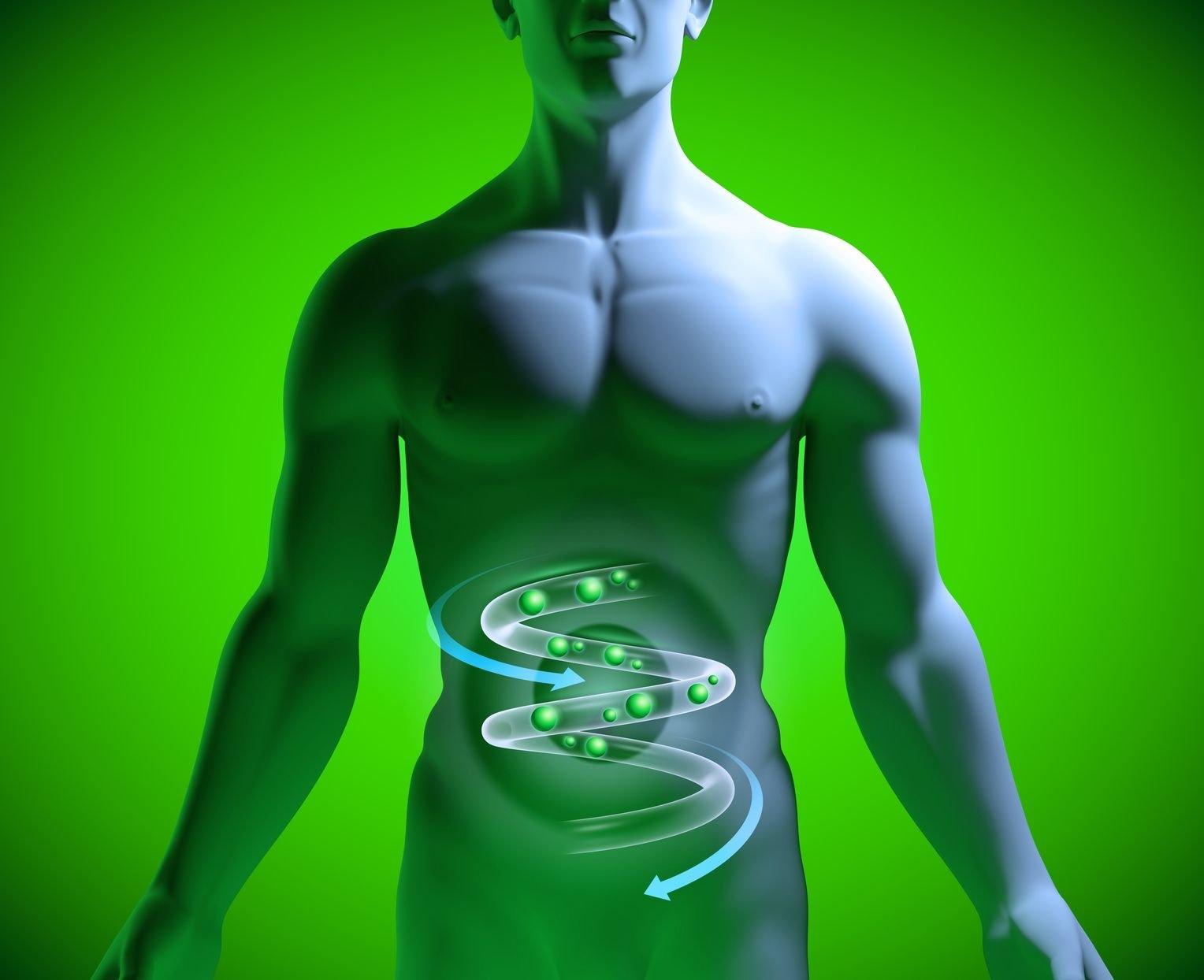 , Equilibrar la flora intestinal: Cómo tener un intestino sano.