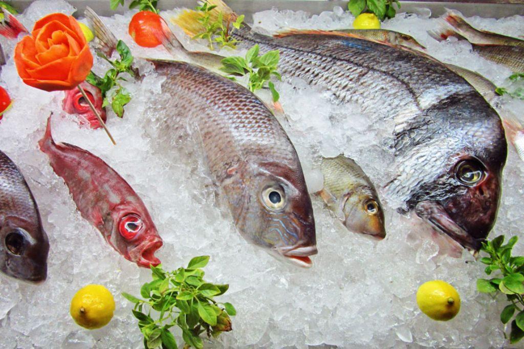 , 5 nutrientes para el cerebro que solo se consiguen en la carne, pescado y huevos