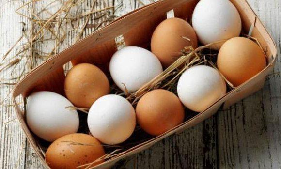 , Huevos marrones vs huevos blancos – ¿Hay alguna diferencia?