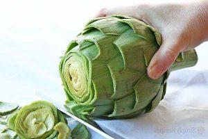 , 16 diuréticos naturales para mantenerte sano