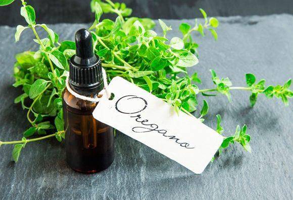 ¿Qué es el aceite de orégano y cuáles son sus beneficios?