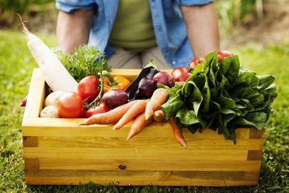 , Comida Sana – Una Guía Detallada Para Principiantes