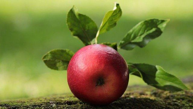 , 7 Alimentos Excelentes Con Un Bajo Índice Glucémico