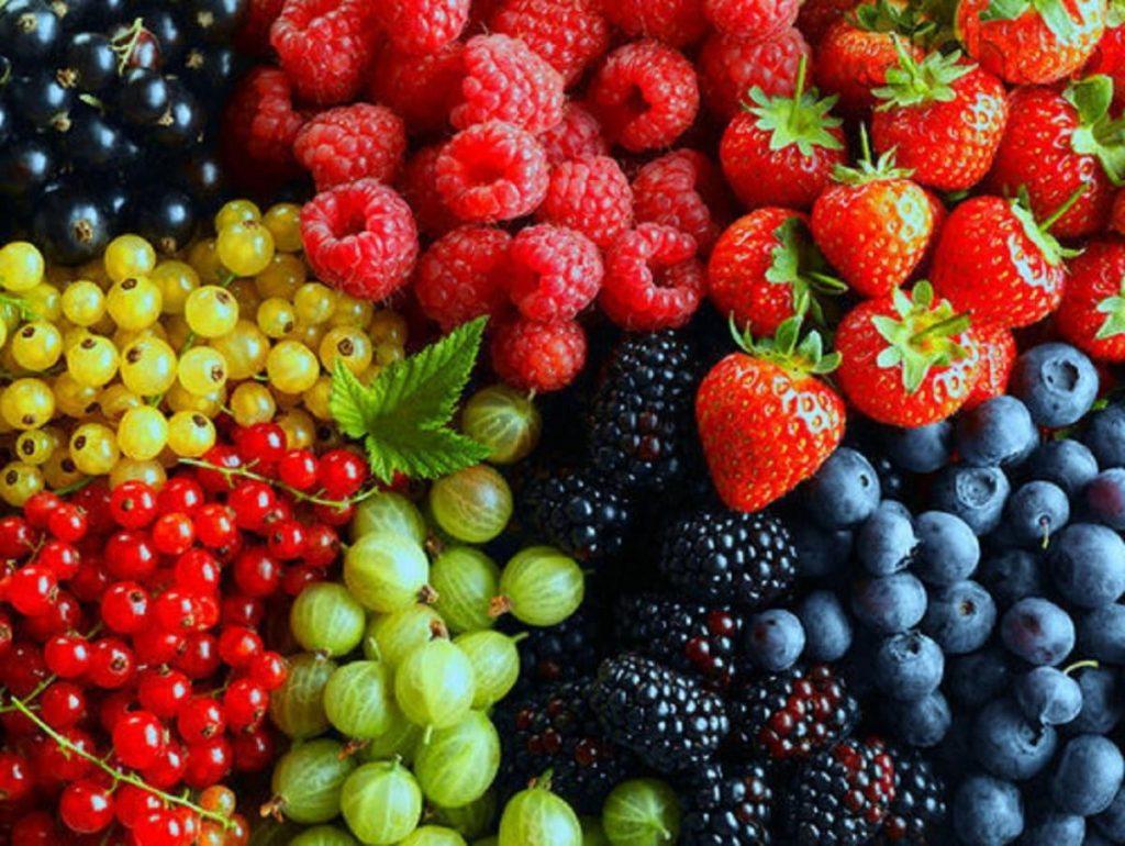 , Alimentos Que Pueden Evitar El Cáncer – Basados En Estudios