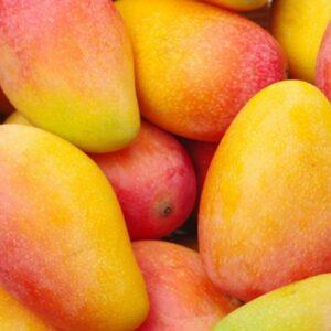 Propiedades Del Mango ¿Qué Es, Para Qué Sirve En La Salud Y Cuáles Son Sus Beneficios?