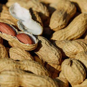 10 beneficios del cacahuate comprobados científicamente