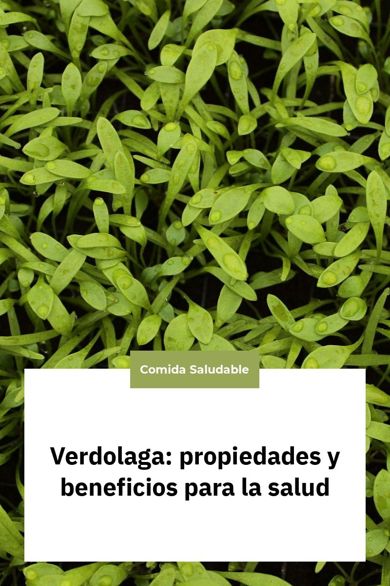 Verdolaga: propiedades y beneficios para la salud