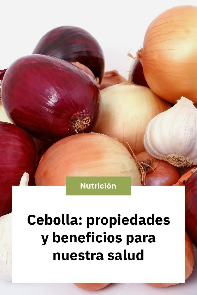 Cebolla: propiedades y beneficios para nuestra salud