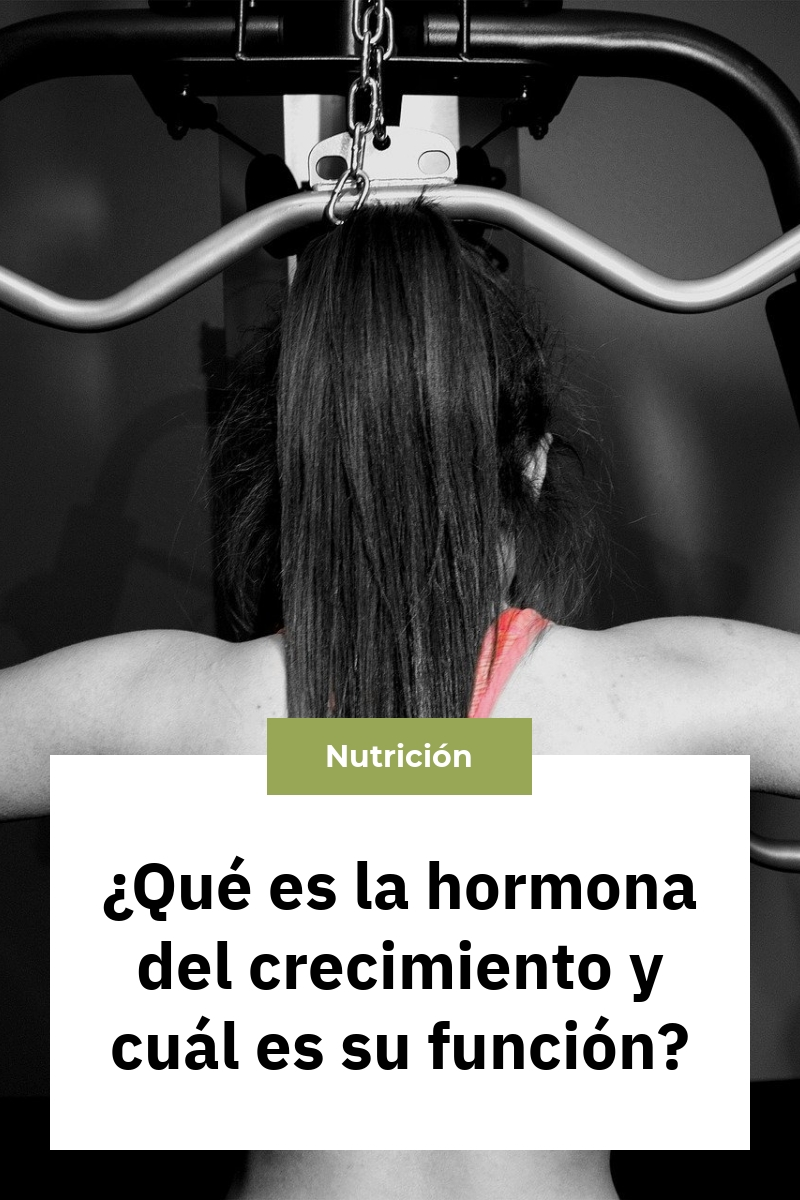 ¿Qué es la hormona del crecimiento y cuál es su función?