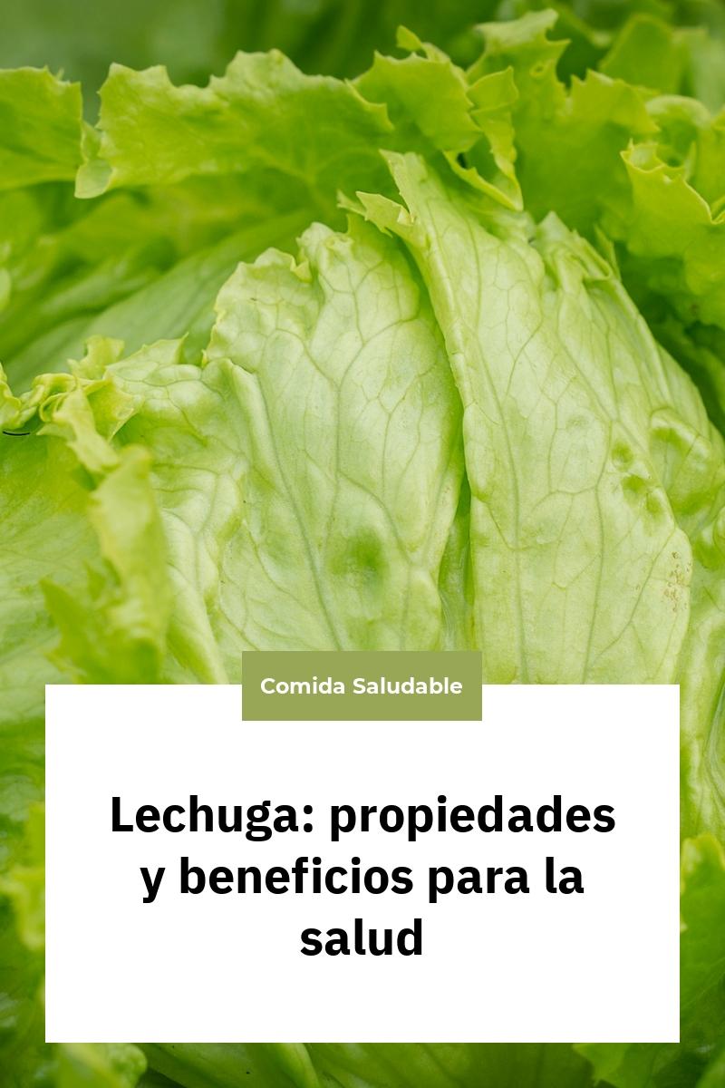 Lechuga: propiedades y beneficios para la salud