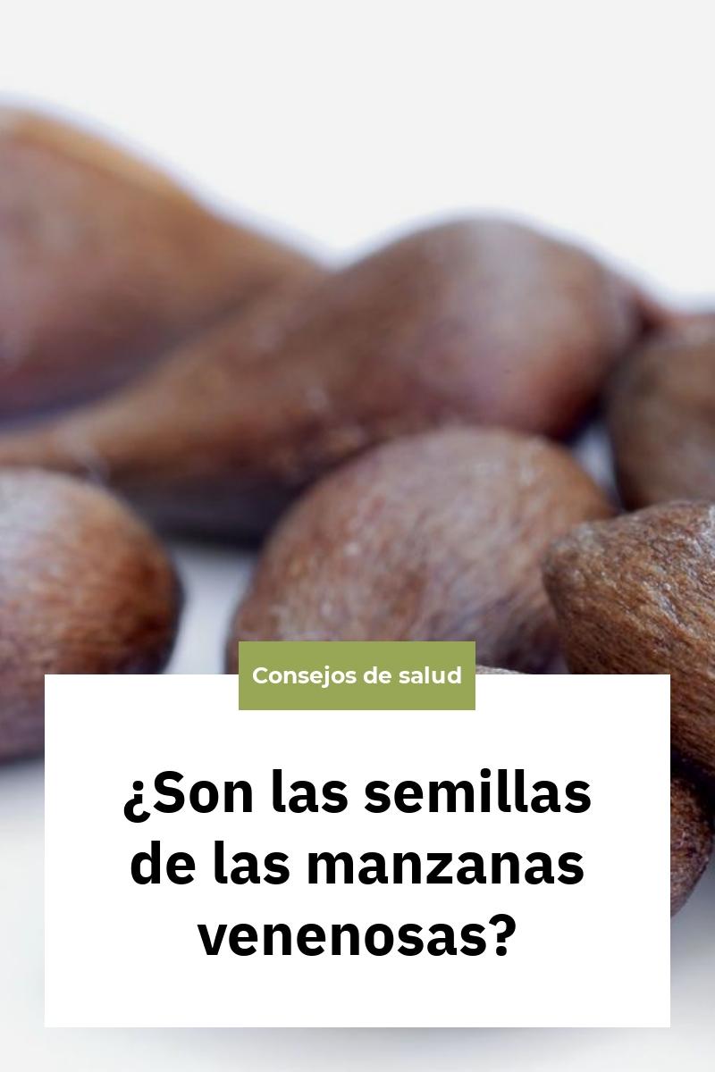 ¿Son las semillas de las manzanas venenosas?