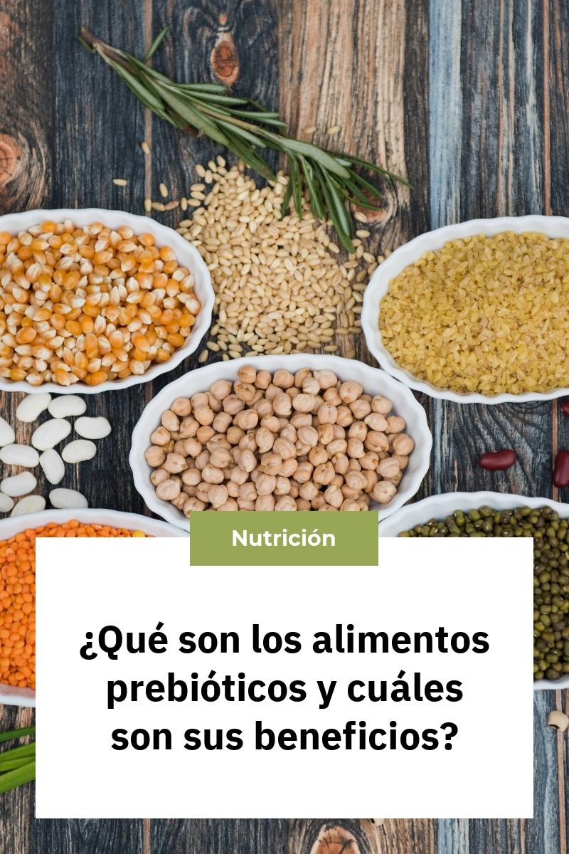 ¿Qué son los alimentos prebióticos y cuáles son sus beneficios?