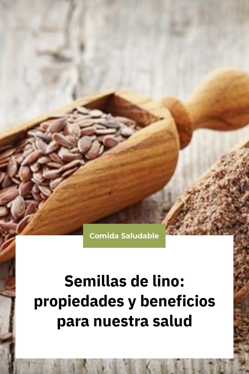 Semillas de lino: propiedades y beneficios para nuestra salud