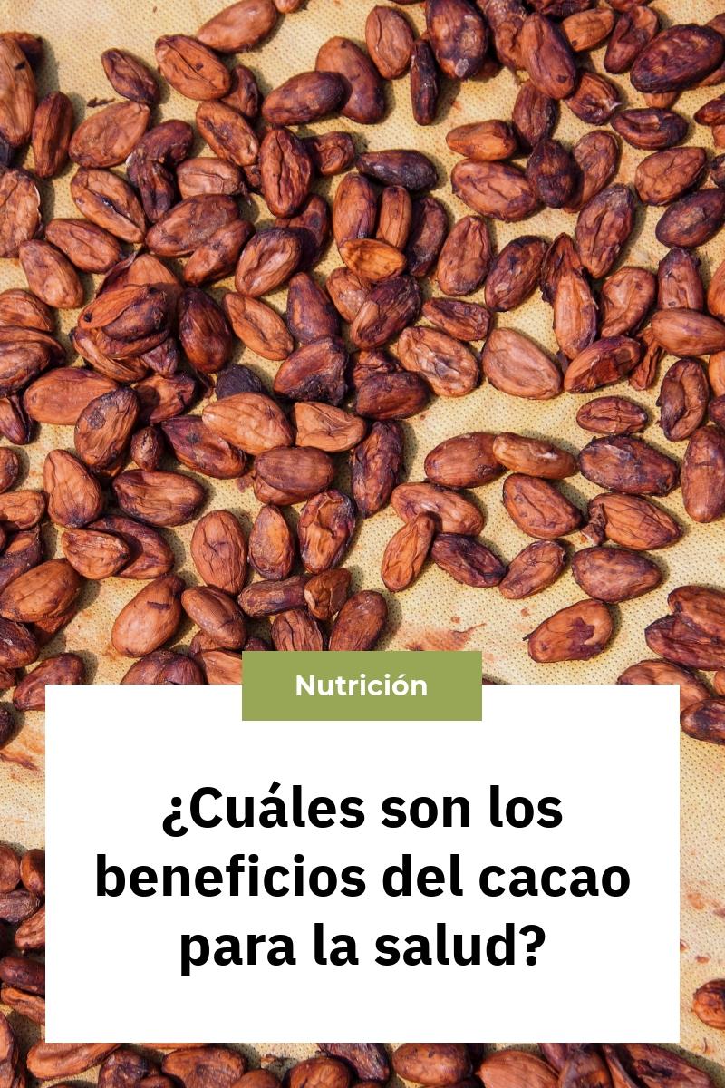 ¿Cuáles son los beneficios del cacao para la salud?